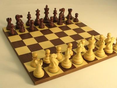Chess Anindita