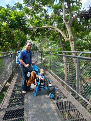 Suasana Penataan Bali Zoo Yang Cenderung Asri dan Bersih